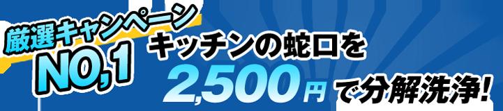 キッチンの蛇口を2500円で分解洗浄