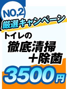トイレの徹底清掃+除菌3500円